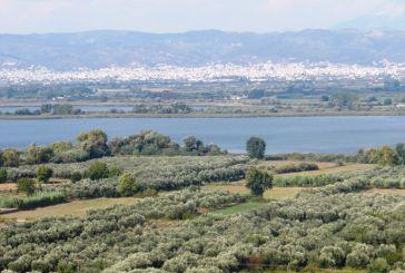Θησαυρός Βιοποικιλότητας ο Δήμος Αγρινίου