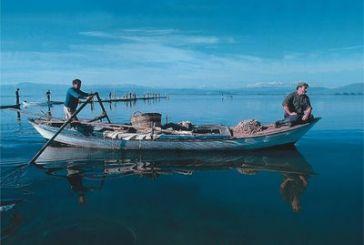 Σε απόγνωση 2000 ψαράδες του Αμβρακικού