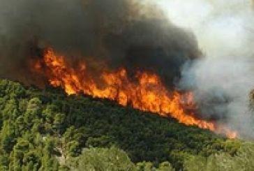 Πυρκαγιές: Στις πρώτες θέσεις ο νομός μας, τελευταία η Ευρυτανία!
