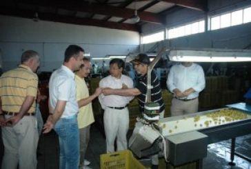 Νέοι ορίζοντες συνεργασίας ανάμεσα στο Δήμο Ι.Π.Μεσολογγίου και το Βιετνάμ