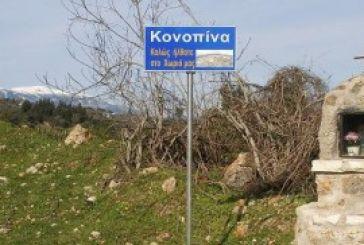 """""""Κραυγή αγωνίας"""" για την κατάσταση στην Κωνωπίνα"""