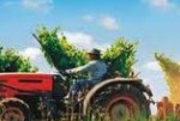 Συμβούλιο Αγροτικής Πολιτικής και Τροφίμων δημιουργείται στην Περιφέρεια