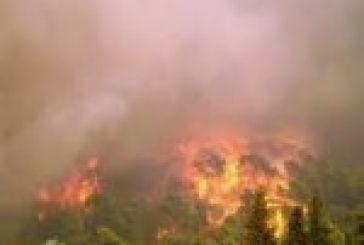 Πυρκαγιά στο Σπάρτο Αμφιλοχίας