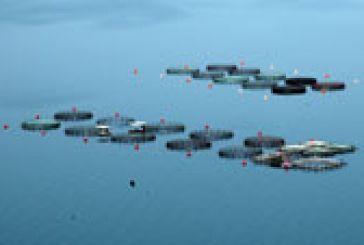 Τι απαντά η Κυβέρνηση για τις υδατοκαλλιέργειες και την Αιτωλοακαρνανία