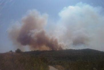 Πυρκαγιά και σε περιοχή μεταξύ Κουβαρά και Φυτειών