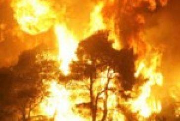 Στις φλόγες ο δήμος Ακτίου -Βόνιτσας. Καίγεται και η περιοχή από Κορπή έως Θύρρειο