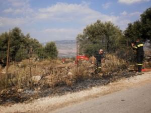 Κατασβέστηκε γρήγορα η φωτιά στη θέση Φωλιάδες Παλαίρου