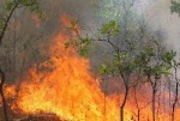 Σύσκεψη για τις φωτιές στο Μεσολόγγι
