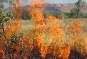 Σε εξέλιξη φωτιά μεταξύ Σπάρτου και Λουτρακίου