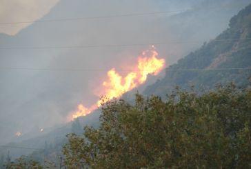Σε εξέλιξη πάλι πυρκαγιά κοντά στη Σκουτεσιάδα