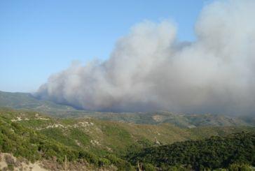 Σε ύφεση η φωτιά κοντά στη Σκουτεσιάδα