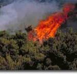 Προς Κατούνα η πυρκαγιά της Στάνου. Ύποπτα συμβάντα…