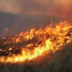 Mάχη με τις φλόγες και στη Στάνου Αμφιλοχίας