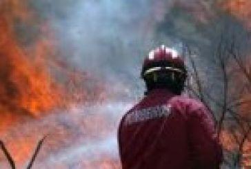 Zωσμένη από τις φλόγες η Περατιά Παλαίρου. Αμείωτο το μέτωπο της Γαυρολίμνης.