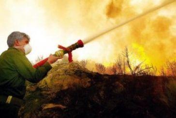 Ογδόντα στρέμματα κάηκαν στη Σκουτεσιάδα. Τριπλή η εστία και ερωτηματικά…