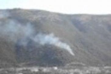 Yπό έλεγχο η πυρκαγιά στην περιοχή του Σχίνου