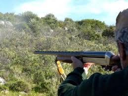 O ΔΕΔΔΗΕ εφιστά την προσοχή στους κυνηγούς: να μην πυροβολούν κοντά σε ηλεκτροφόρα δίκτυα