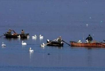 Ρίχνει δίχτυα η Αστυνομία για την παράνομη αλιεία
