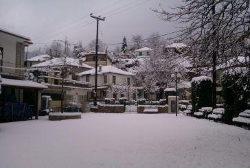 Όμορφες εικόνες από τη χιονισμένη Δομνίστα Ευρυτανίας