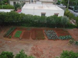 Ανάβει n κουβέντα για τον δημοτικό λαχανόκηπο