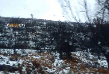 Ό,τι άφησε πίσω του ο χιονιάς (φωτό και βίντεο)