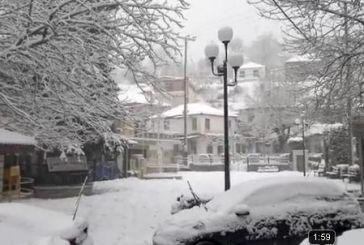 Η Δομνίστα χιονισμένη (Βίντεο)