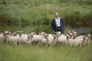 Eως 30 Μαρτίου οι αιτήσεις για τη βιολογική κτηνοτροφία
