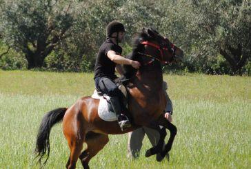 Βίντεο από τις ιπποδρομίες στον Άγιο Γεώργιο Μεσολογγίου.