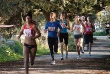 """2oς Λαϊκός Αγώνας Δρόμου """"Άγιος Αρτέμιος"""" 8 χλμ"""