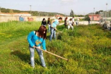 ΕΠΑ.Λ. ΚΑΤΟΧΗΣ: «Εθελοντισμός: στάση ζωής»
