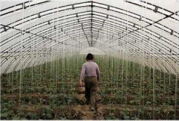 Συνεχώς στη διάθεση των καλλιεργητών δύο γεωτεχνικοί του δήμου Αγρινίου