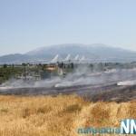 Πυρκαγιά κοντά στο Μολύκρειο (Video)