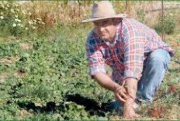 Δωρεάν σεμινάρια για βιολογικές καλλιέργειες στο Νεοχώρι και στην Κατοχή