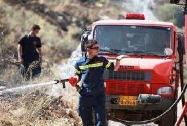 Κατασβέστηκε φωτιά κοντά στη Γουριώτισσα
