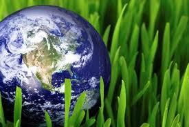 Οι απόφοιτοι του τμήματος Διαχείρησης Περιβάλλοντος για την Παγκόσμια Ημέρα Περιβάλλοντος