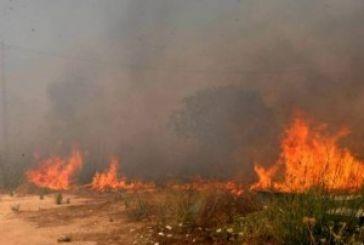 Πυρκαγιά στο Μεσολόγγι