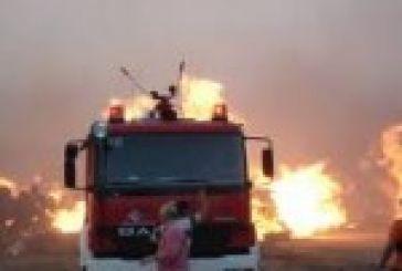 Κινητοποίηση για φωτιά στην ορεινή Μακρυνεία