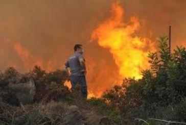 Μάχη με τις φλόγες στο Περιστέρι