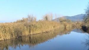 Ένα βίντεο για τη Ματαράγκα