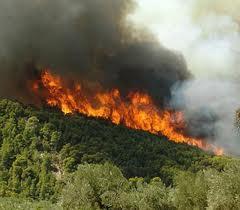 Φωτιά στο Αφράτο Παραβόλας