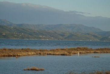 Zητά μέτρα για την παράνομη αλιεία στον Αμβρακικό η Νίκη Φούντα
