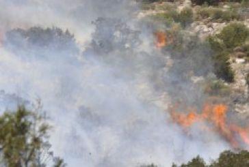 Φωτιά στα Αη-Βασιλιώτικα, κορμοί καίγονται ακόμα στην Παραβόλα