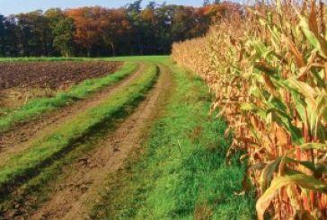 Νέος φόρος στα αγροτεμάχια σφίγγει τον κλοιό