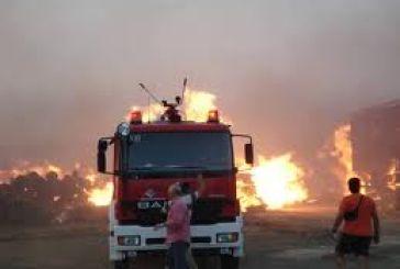 Άμεση κατάσβεση φωτιάς στο Ρίβιο