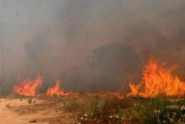 Φωτιά στη Σταμνά υπό πλήρη έλεγχο