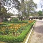 Διεργασίες συμβούλων για το πάρκο