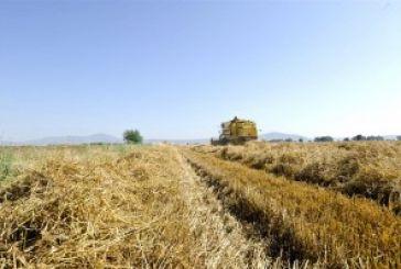 Καλλιέργεια κριθαριού προωθεί η ΕΑΣ Αγρινίου