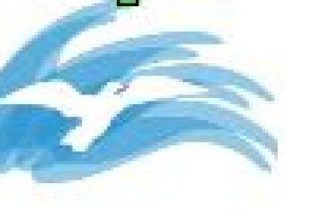 Πρόγραμμα για την υπερβολική χρήση διαδικτύου υλοποιείται σε Αγρίνιο, Μεσολόγγι, Ναύπακτο