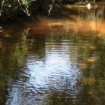 Τι σημαίνει για Ναύπακτο και Μεσολόγγι το ρέμα της Αμεραούς