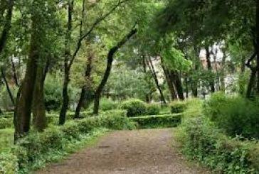 Το Πάρκο και τα άλλα ζητήματα
